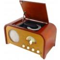 Centro de musica nostalgia con Radio y CD. NR980